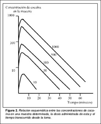 grafico-mecanismo-cocaina