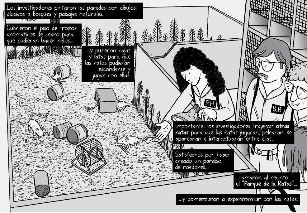 Imagen del comic que narra el experimento con ratas del entorno y el consumo de drogas