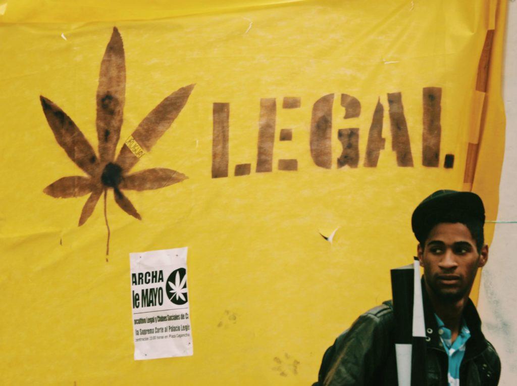 la marihuana y el debate politico y social acerca de su legalizacion