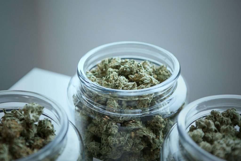 podria el cannabis ser una alternativa menos peligrosa para aliviar el dolor